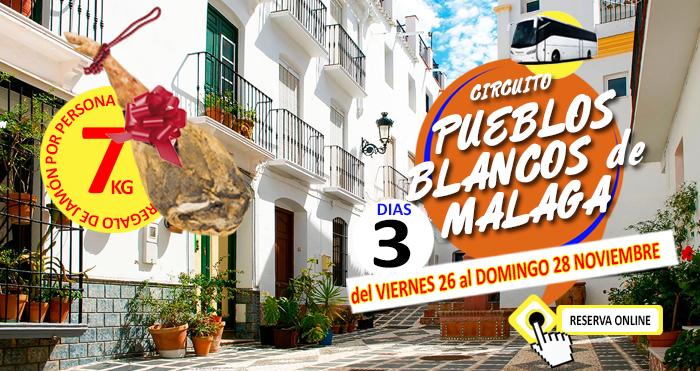 26-11-21 Circuito en Autobus :: Pueblos Blancos de Malaga :: Hotel Toboso Chaparil 3*** :: Regalo de Jamón por Persona :: 3 Días